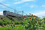 /railrailrail.xyz/wp-content/uploads/2020/07/IMG_2689-2-1-800x534.jpg