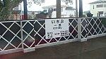 /stat.ameba.jp/user_images/20200619/09/penguin-suica/d7/6a/j/o1080060714776309877.jpg