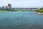 200807_相模川橋梁下流側_赤1000形下り