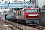 20200808-DSC_8739