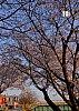 DSCF9730_edited-1.jpg