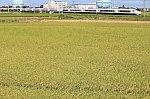 /stat.ameba.jp/user_images/20200903/23/kitatetu-dd/2e/1c/j/o0915060914814206941.jpg