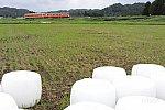 /railrailrail.xyz/wp-content/uploads/2020/09/IMG_4522-2-800x534.jpg