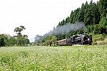 /stat.ameba.jp/user_images/20200924/01/c62niseko-demioyaji/e9/6c/j/o1080072014824292014.jpg