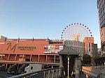 /stat.ameba.jp/user_images/20200928/16/kiniro-mosaicmall/1a/8e/j/o1080081014826585306.jpg