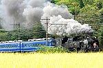 /stat.ameba.jp/user_images/20201003/20/mako3388/88/d6/j/o1795119714829271908.jpg