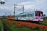 f:id:hato_express:20201004190351j:plain
