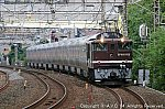 EF641052「長野行きカシオペア紀行」(2) 202010