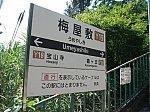 kt-umeyashiki-5.jpg