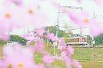 /stat.ameba.jp/user_images/20201023/00/r-komanaka/10/49/j/o2675178814839078946.jpg