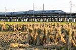 201006kanagasaki_sinkansen-1.jpg