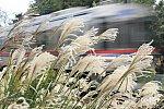 /railrailrail.xyz/wp-content/uploads/2020/11/IMG_6215-2-800x534.jpg