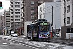 D7C_5666_R.JPG