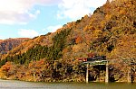 /stat.ameba.jp/user_images/20201119/16/cavacho/b5/00/j/o2000133314853620305.jpg