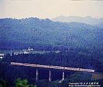 199008_0168.jpg