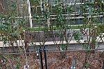 /stat.ameba.jp/user_images/20201229/23/tdf1179/f7/5e/j/o2400160014873908314.jpg