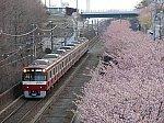 /stat.ameba.jp/user_images/20210108/18/gwg22487/e2/15/j/o0640048014878802379.jpg
