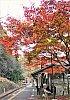 /stat.ameba.jp/user_images/20210117/01/sumioc57/40/cc/j/o0284040514882706693.jpg