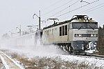 2021010