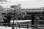 f:id:nagee4678:20210210154533j:plain