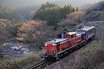 /stat.ameba.jp/user_images/20210211/23/hatahata00719/13/73/j/o0800053114895009470.jpg
