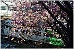/stat.ameba.jp/user_images/20210303/08/masa5861y/74/7b/j/o0864057314904651043.jpg