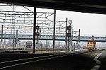 DF59DSC_7024-1.jpg