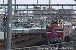 /stat.ameba.jp/user_images/20210404/08/suhane/d0/47/j/o0500033314920942867.jpg