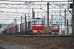 DF9DSC_7312-2.jpg