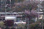 /stat.ameba.jp/user_images/20210409/19/yakanisi-4786/28/50/j/o0603040214923773519.jpg