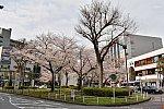 /stat.ameba.jp/user_images/20210404/19/m-mori0918/b2/11/j/o1574105014921271955.jpg