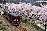 /stat.ameba.jp/user_images/20210409/15/do404mi/aa/3b/j/o0900060014923653373.jpg