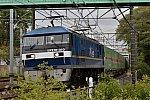 DSC_7655s.jpg