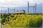 /stat.ameba.jp/user_images/20210412/08/masa5861y/07/4c/j/o0859056914925110110.jpg