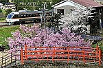 /stat.ameba.jp/user_images/20210415/01/prius0771/66/5f/j/o1688112514926537141.jpg