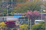 /stat.ameba.jp/user_images/20210415/19/yakanisi-4786/cd/b5/j/o0668044514926876712.jpg
