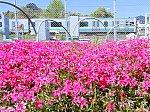 /stat.ameba.jp/user_images/20210411/11/wakashio2gou/e7/47/j/o1024076814924577911.jpg