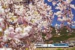 /stat.ameba.jp/user_images/20210418/22/chamonix4328/06/46/j/o0900060114928525377.jpg