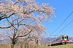 /stat.ameba.jp/user_images/20210422/20/bbsh635csi19880829/8e/05/j/o0960064014930449258.jpg