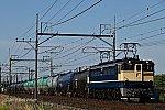 FC2-0263.jpg