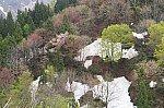 /stat.ameba.jp/user_images/20210506/21/duckn-rail/51/83/j/o0800053314937868695.jpg