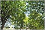 /stat.ameba.jp/user_images/20210506/18/ishichan-5861/37/60/j/o1020068714937799616.jpg