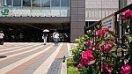 /stat.ameba.jp/user_images/20210602/23/r34masa/9d/70/j/o1080060714951528438.jpg