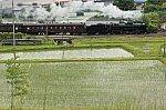 /stat.ameba.jp/user_images/20210610/23/jyoukiya498/e7/78/j/o2000133314955505640.jpg