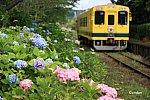 /railrailrail.xyz/wp-content/uploads/2021/06/IMG_4793-2-800x534.jpg