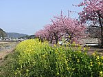 /stat.ameba.jp/user_images/20210614/00/fuiba-railway/e5/24/j/o2048153614957074225.jpg