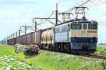 900-EF65-210617B1.jpg