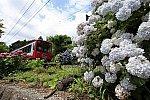 /stat.ameba.jp/user_images/20210621/19/namadekosh/a5/97/j/o0659044014960888879.jpg
