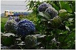/stat.ameba.jp/user_images/20210623/08/masa5861y/9d/54/j/o0869057614961606492.jpg
