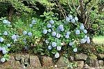 /stat.ameba.jp/user_images/20210713/23/nuaay67443/e1/90/j/o1773118214971726663.jpg